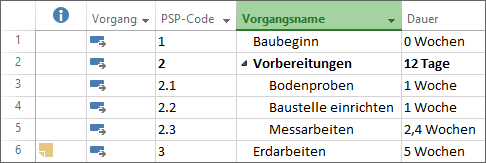 PSP-Code anzeigen