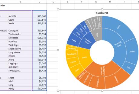 Excel 2016 Fortgeschritten Englisch sunburst